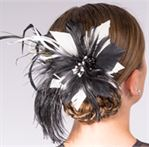 FP1- Blk&Wht Feathers