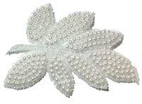 AP29 - Pearl Leaf